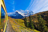 Jungfrau Railway train descending from Wengernalp to Wengen, Swiss Alps, Canton Bern, Switzerland