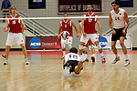 29 APR 2012:  Keaton Pieper (12) of Springfield College dives for a dig against Carthage College during the Division III Men's Volleyball Championship held at Blake Arena in Springfield, MA.  Springfield defeated Carthage 3-0 to win the national title.  Jessica Rinaldi/NCAA Photos