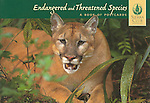Endangered and Threatened Species:  A Book of Postcards<br />