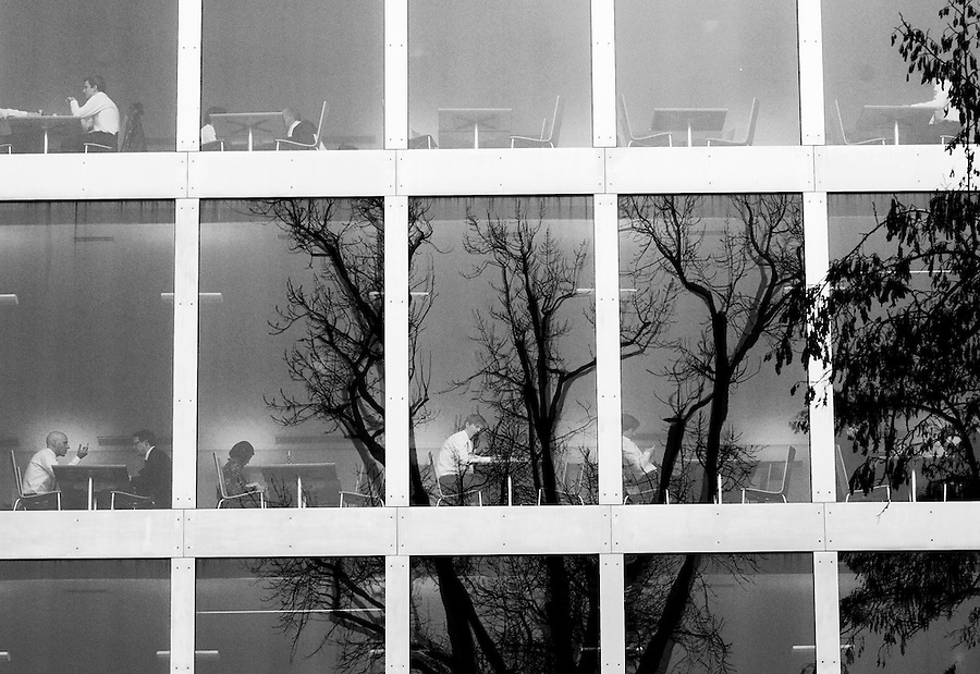 Bare trees reflected on the windows of restaurants for Credit Suisse staff in central Zurich.