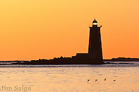 A flock of ducks migrates north in front of Whaleback Lighthouse in Portsmouth, NH.