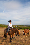 The Cherry Wood Bed, Breakfast and Barn features luxury teepees and horse rides.  Cowgirl and family owner Tiffany Fewel helps move the horse herd out to pasture.