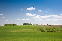 Spring, Tartu County, Estonia