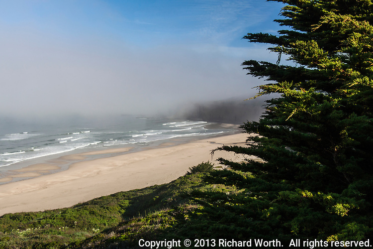 Fog hangs like a thick, heavy theater curtain just off shore along California's coast near San Francisco.