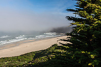 Fog hangs like a thick, heavy theater curtain just off shore along California's coast near San Francisco.