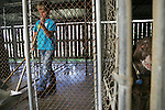 CHAD PILSTER &bull; Hays Daily News<br /> <br /> Thaddeus Weiss, 9, cleans out one of the kennels to prepare for new dogs coming in on Wednesday, July 3, 2013, at Russell Veterinary Services in Russell, Kansas. Thaddeus wrote an essay and won the opportunity to help out at the clinic with animals. He said dogs are his favorite type of animal.