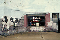 "Man eats his lunch at the picture window of the elaborately painted Barb's Cafe in Strawn, Illinois. pop art, restaurants, mural, advertising. Jim ""Doc"" Finnell. Strawn Illinois."