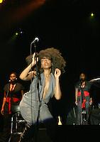 Erykah Badu @ MLK Concert Series in Brooklyn