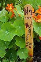 Garden sign from alphabet garden, Community Garden, Yarmouth, ME