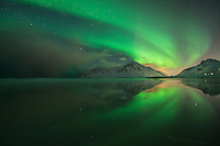 Northern Lights reflection on Skagsanden beach in winter, Flakstadøy, Lofoten Islands, Norway