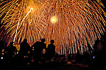 ..A local fireworks display celebrating the 4th of July in Madison, Wisconsin.