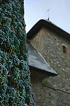A yew tree infront of a small church