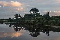 Dawn over Hapuka wetland and river near Haast, West Coast, UNESCO World Heritage Area, South Westland, New Zealand, NZ