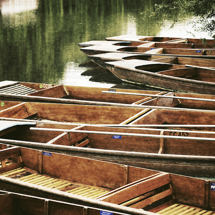 Punts moored by river bank, Cambridge, Cambridgeshire, UK