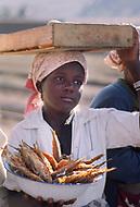 CHILD LABOR MOZAMBIQUE