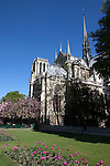 View of Notre Dame from Notre Dame Park, Paris, France