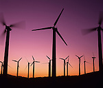 Windmill farm in the desert, sunset light, with windmills in motion, near Palm Springs, California USA