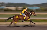 Indian Relay Horse Racing Stock Photos