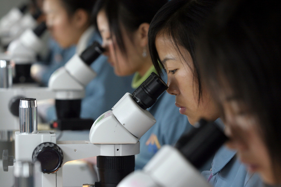 actory workers use a microscopes to check flexible circuit boards used for mobile phones. China's mobile output in 2006 is expected to reach 340 million units, of which 250 million units will be exported to the overseas market.