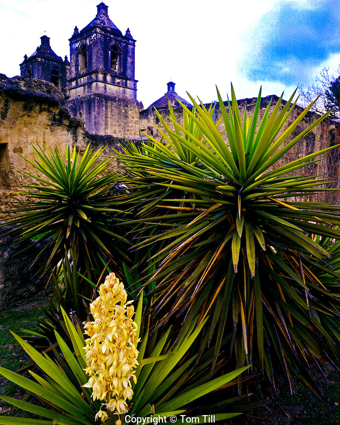 Mission Concepcion, San Antonio Missions .National Historic Park, Texas      Mision Nuestra Senora de la Purisima Conscepcion de Acuna   Built in 1716
