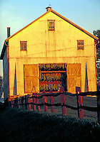 Tobacco barn filled with drying tobacco, sunset. Strasburg Pennsylvania USA Lancaster County.