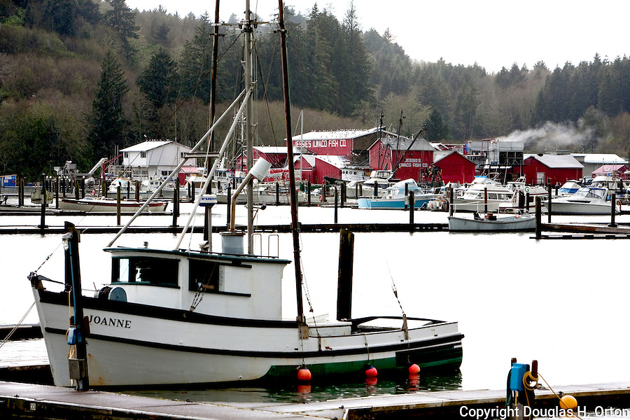 Small salmon trawler a style of commercial fishing boat for Ilwaco wa fishing charters