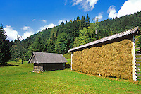 Slovenian style Hayrack, Kozolec, on farm in River Radovna Valley, Triglav National Park, west of Bled, Slovenia, AGPix_0546.