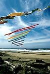 Oregon: Oregon Coast, Kite Flying, Lincoln City,  Photo: orcoas102  .Photo copyright Lee Foster, 510/549-2202, lee@fostertravel.com, www.fostertravel.com