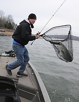 NWA Democrat-Gazette/FLIP PUTTHOFF <br /> Brad Wiegmann catches a striped bass Feb. 24 2017 at Beaver Lake after locating a school of stripers and white bass with his depth finder. Wiegmann, who lives on the lake near Nob Hill, would never have known the fish were there without his depth finder, which showed the fish.