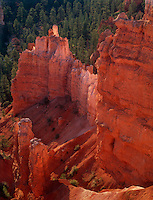 730750042 morning light turns the hoodoos in agua canyon brilliant red in bryce canyon national park utah