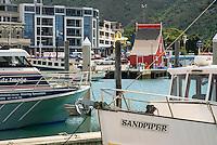 Scenic Picton Harbour, Marlborough, New Zealand, NZ