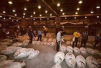 Asie/Japon/Tokyo/Tsukiji: Le marché aux poissons - Détail de thons congelés