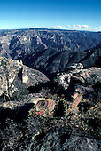 = views on the canyons of Sierra madre     Mexico    /// Vue sur les canyons de la Sierra Madre    Mexique +