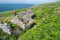 Sheeps Head Peninsula, West Cork, Ireland July 2010.  Hikers on the strecht between the cove and Crimea pass the Gortavallig copper mine. The Sheep's Head Way is an 88 km long distance hiking trail which combines the low, rugged hills and a splendid cliff coastline with quieter roads, paths and tracks to make a complete circuit around the Sheep's Head Peninsula. Photo by Frits Meyst/Adventure4ever.com