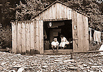 Erie PA: Brady and Sarah Stewart vacationing in new rental cabins on Lake Erie - 1915.  Sarah Mathews' sister lived outside Cleveland Ohio.
