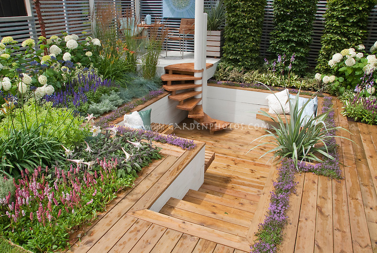 Sunken deck landscaping and garden plant flower stock for Creating privacy on patio