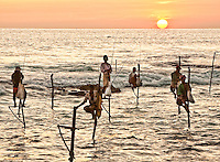 Stick fishermen at sunset.<br /> (Photo by Matt Considine - Images of Asia Collection)