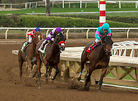 ARCADIA, CA  FEBRUARY 4:  #1 Royal Mo, ridden by Victor Espinoza, has the lead going into the stretch of the Robert B. Lewis Stakes (Grade lll) at Santa Anita Park on February 4, 2017, in Arcadia, CA (Photo by Casey Phillips/Eclipse Sportswire/Getty Images)