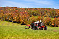 A man drives a tractor on a farm in Berkshire county, Massachusetts Thursday October 3, 2013.