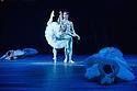 London, UK. 11.06.2013. English National Ballet stage Derek Deane's in-the-round production of SWAN LAKE, at the Royal Albert Hall. Set design is by Peter Farmer and lighting by Howard Harrison. Odette / Odile -Daria Klimentová, Siegfried - Vadim Muntagirov, Rothbart - James Streeter. Photograph © Jane Hobson.