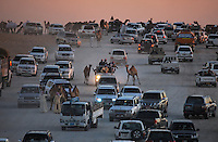 Million Road is crowded with camels and cars as owners and trainers proudly parade their animals for all to see. There were 24,000 entrants and they hostle for space with their gas-guzzling counterparts.