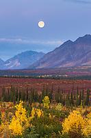 Moonrise over the Alaska range mountains, interior, Alaska.