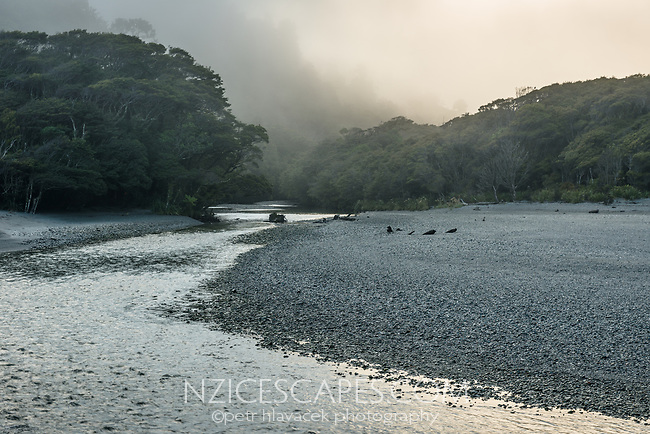 Moody dawn at Smoothwater Bay with Smoothwater River near Jackson Bay, South Westland, West Coast, UNESCO World Heritage Area, South Island, New Zealand, NZ