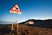 Brown hyena road sign near Luderitz, Namibia