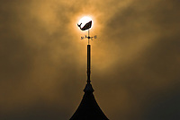 Weathervane,  Massachusetts, Martha's Vineyard, Oak Bluffs