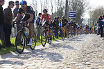 Riders including Ian Stannard (GBR) Team Sky summit the Taaienberg 18% cobbled climb during the 60th edition of the Record Bank E3 Harelbeke 2017, Flanders, Belgium. 24th March 2017.<br /> Picture: Eoin Clarke | Cyclefile<br /> <br /> <br /> All photos usage must carry mandatory copyright credit (&copy; Cyclefile | Eoin Clarke)