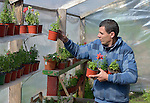A student works with plants in a greenhouse at the Instituto de Buena Voluntad (the Good Will Institute) in Montevideo, Uruguay. Sponsored by the Methodist Church of Uruguay, the institute works with youth and adults with disabilities. It receives financial support from United Methodist Women.