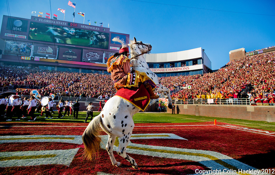 TALLAHASSEE, FL 11/24/12-FSU-UF112412 CH-Florida State University student Drake Anderson, who portrays Osceola, rides Renegade across the field prior to the Florida game Saturday at Doak Campbell Stadium in Tallahassee. .COLIN HACKLEY PHOTO