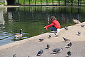 Tourists take advantage of the good weather to feed and photograph the birds by the lake in Regent's Park.