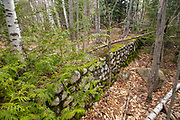 Remnants of an old building along the East Branch of the Pemigewasset River in Lincoln, New Hampshire.
